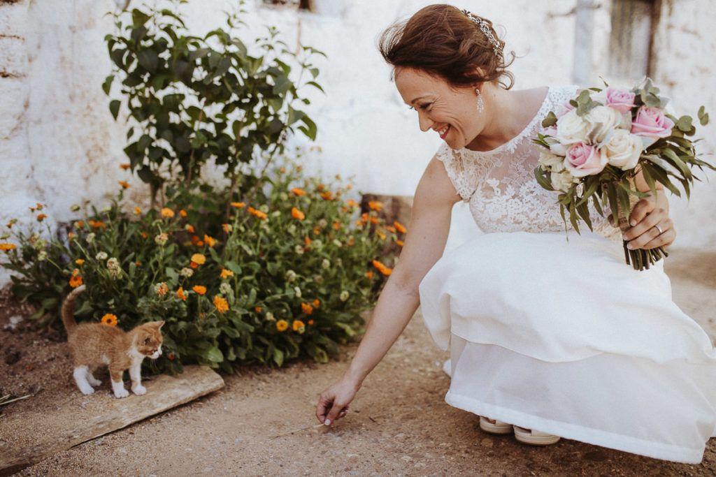 Boda rural en el Convento de Mave - novia - felicidad - gato